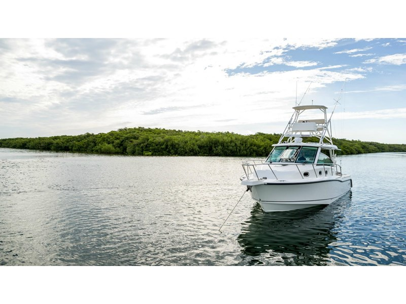 boston whaler 345 conquest - boat share 796708 004