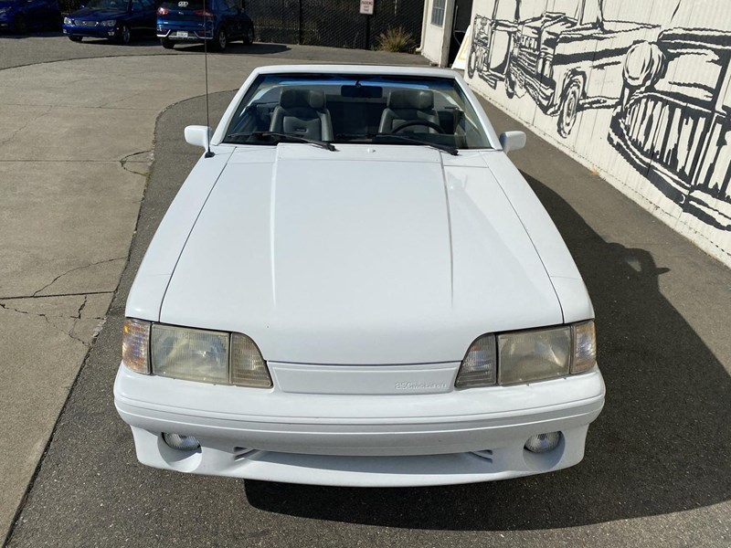 ford mustang 818093 019