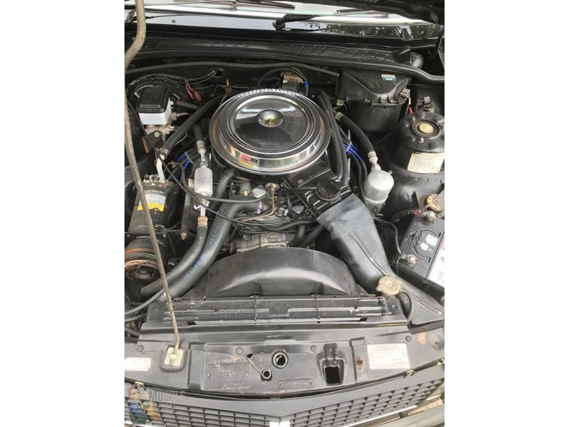 holden commodore 825188 010