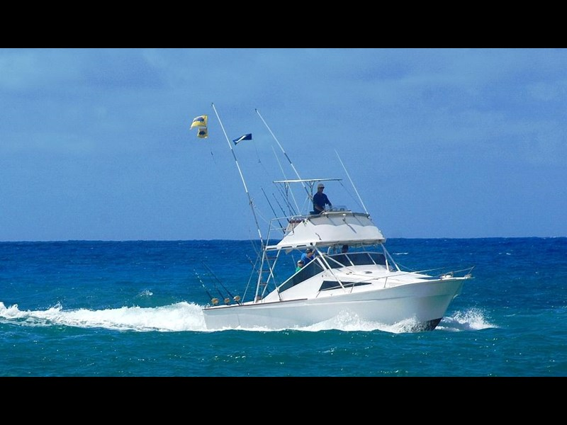 custom game boat charter 87294 001