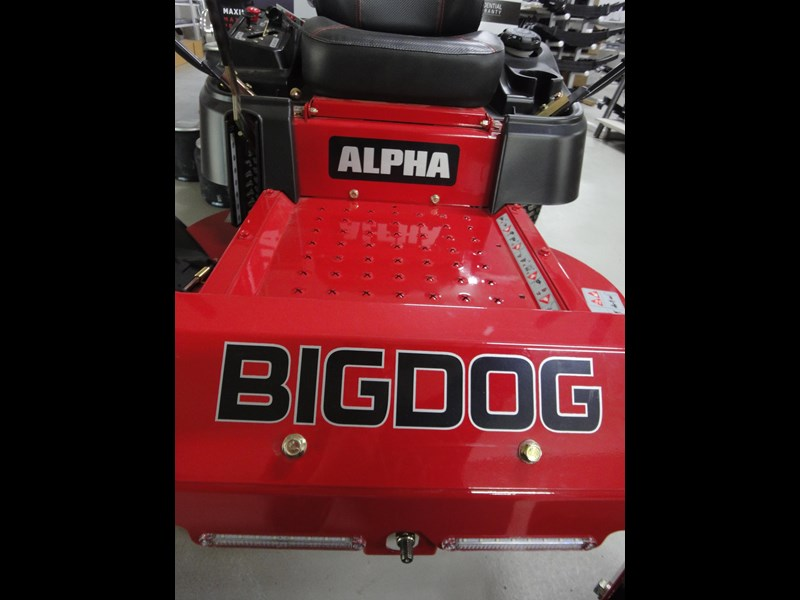big dog alpha 422347 003