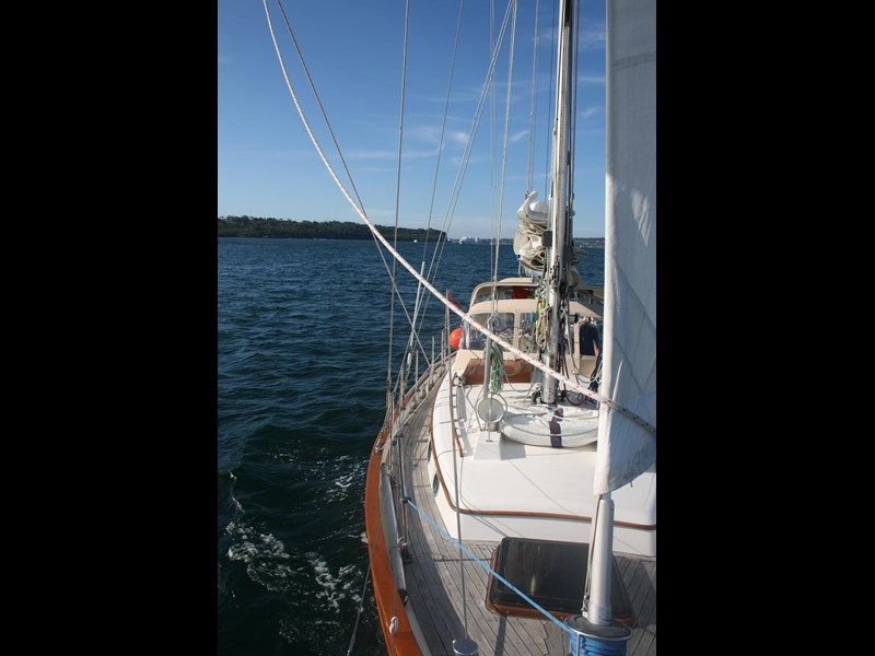 young sun 43 staysail cutter 459578 033