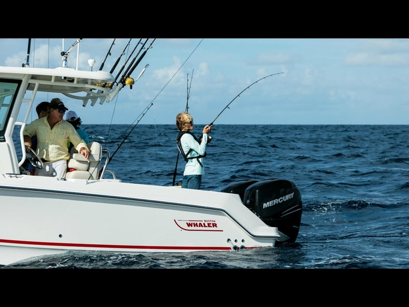 boston whaler 250 outrage 294253 017
