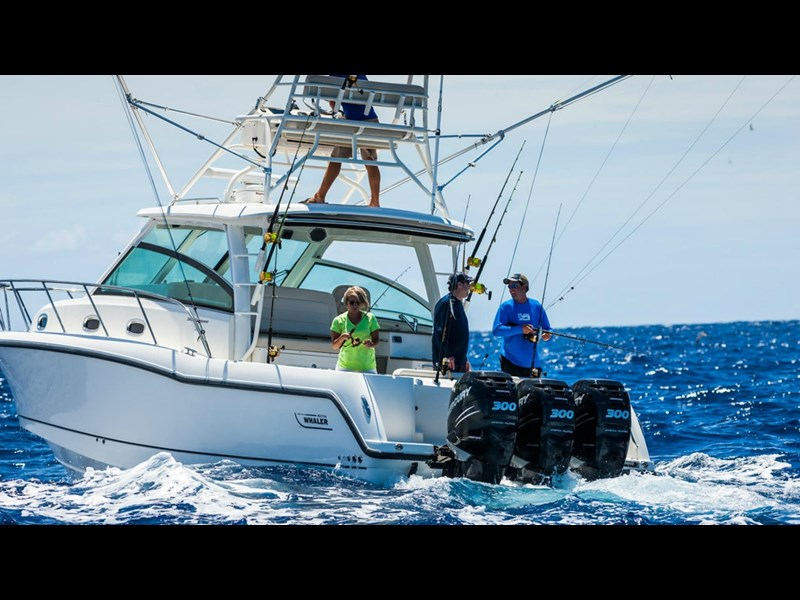 boston whaler 345 conquest 294255 017