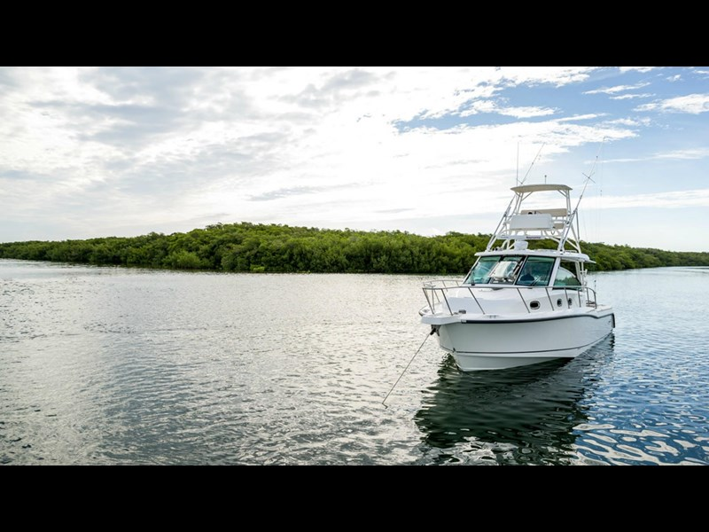 boston whaler 345 conquest 294255 007