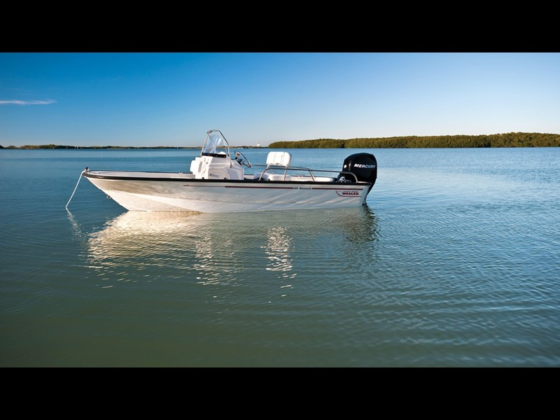 boston whaler 150 montauk 294227 013