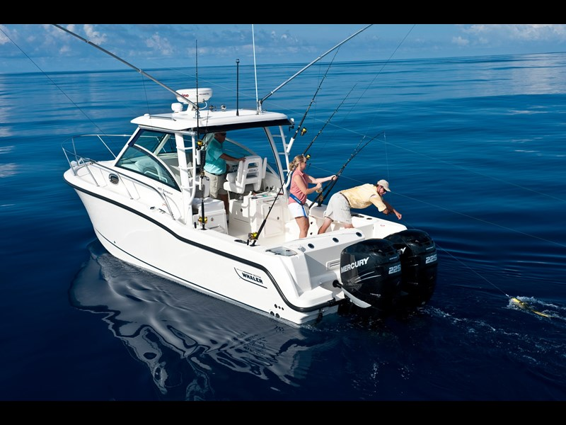 boston whaler 285 conquest 245299 005