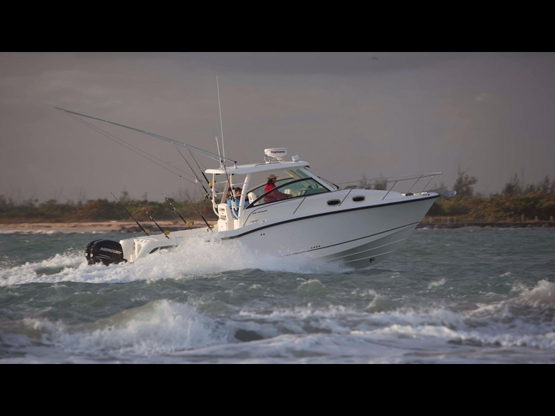 boston whaler 315 conquest 245300 009