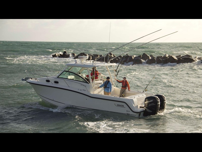 boston whaler 315 conquest 245300 003