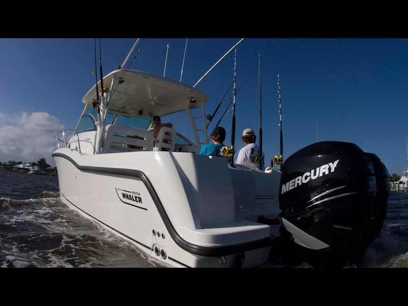 boston whaler 315 conquest 245300 007