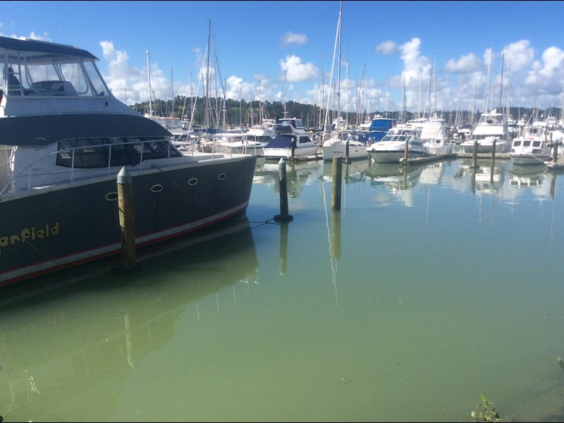 15 metre c1 marina berth at opua 15 metre 570026 017
