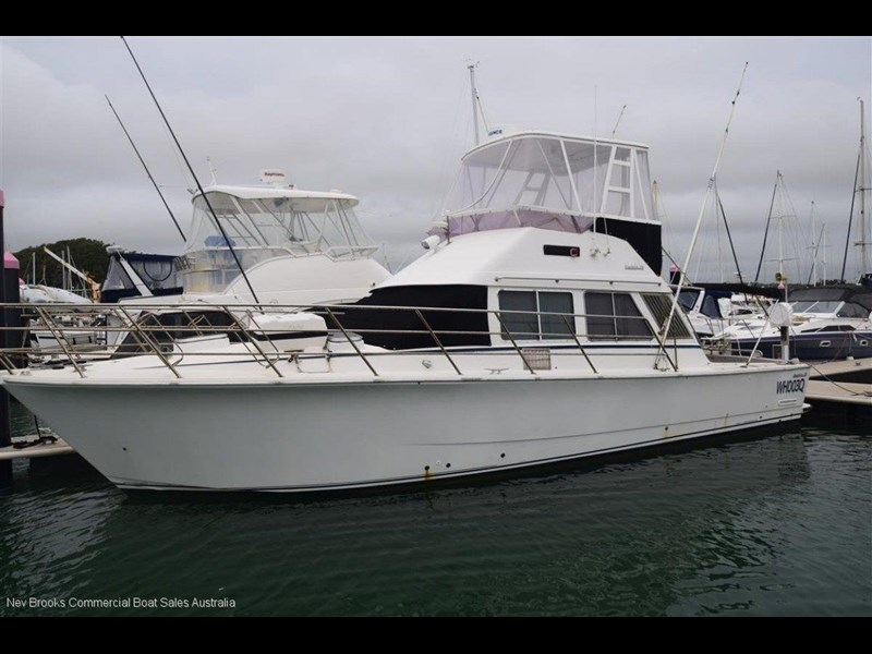 precision 38 flybridge 582826 001