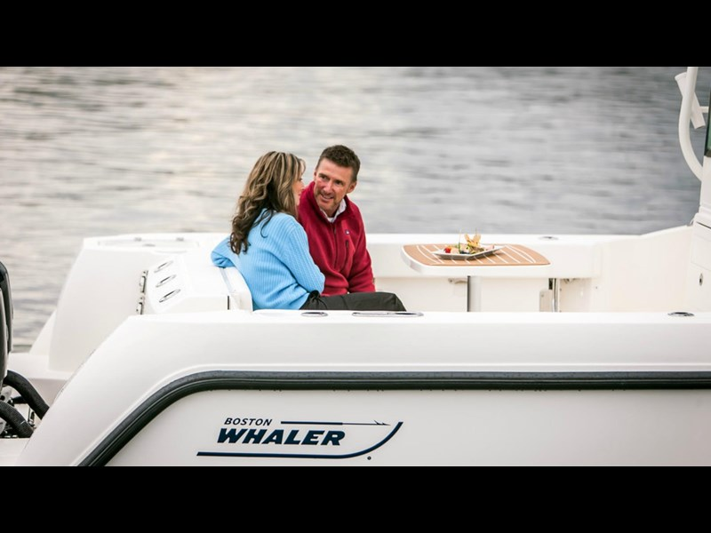 boston whaler 315 conquest pilothouse 294256 019