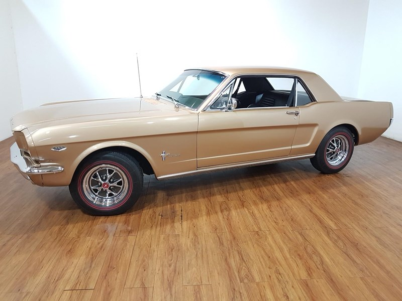 ford mustang 675847 011