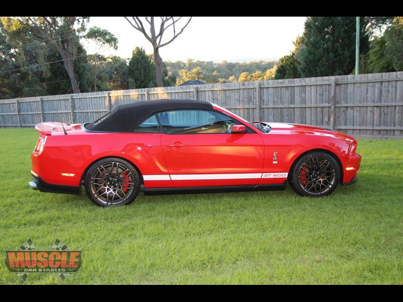 ford shelby 715366 013