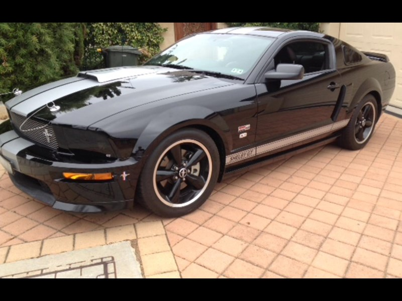 shelby mustang 730459 001