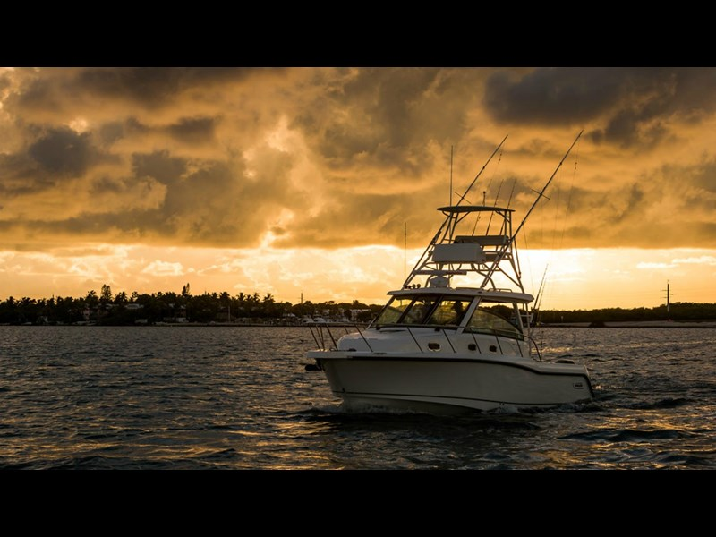 boston whaler 345 conquest - boat share 796708 005