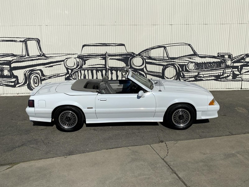 ford mustang 818093 027