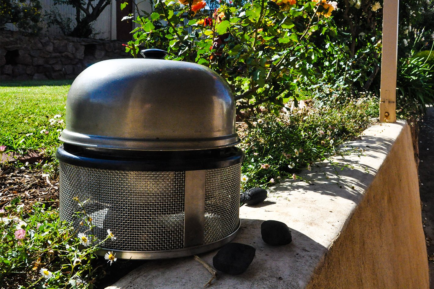 the cobb cooker: product test