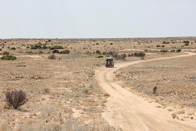 arid Strzelecki Track