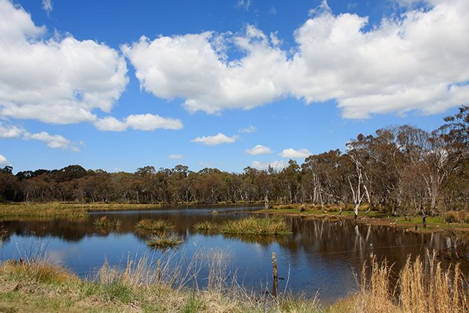 Mole River NSW dam