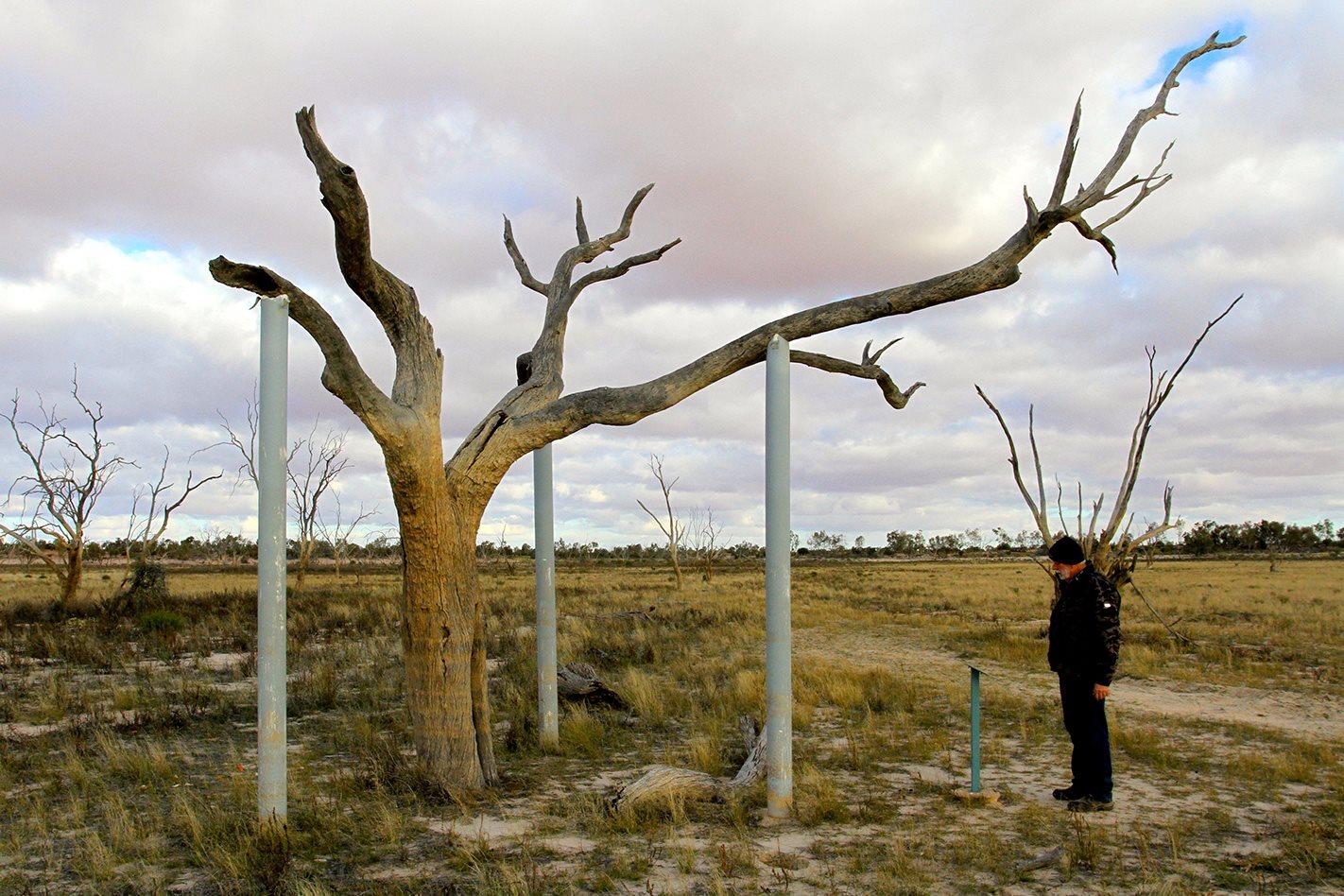 cry Lake Pinaroo NSW