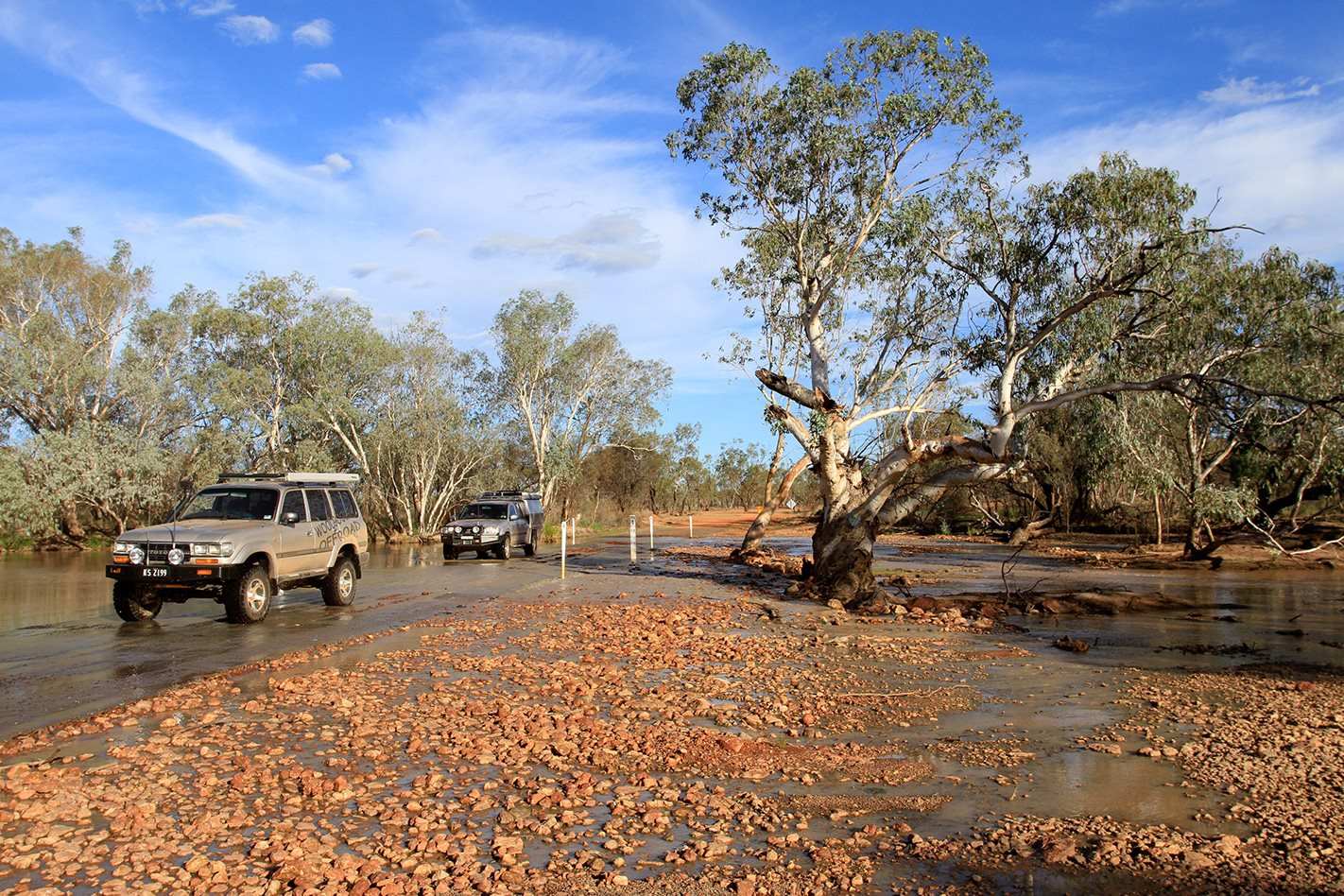 Currawinya National Park QLD