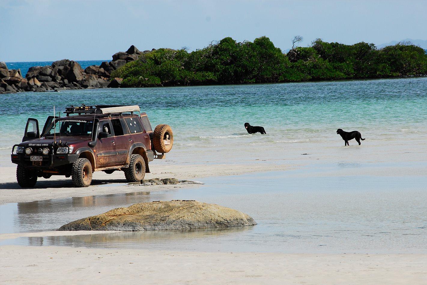 Cape York QLD