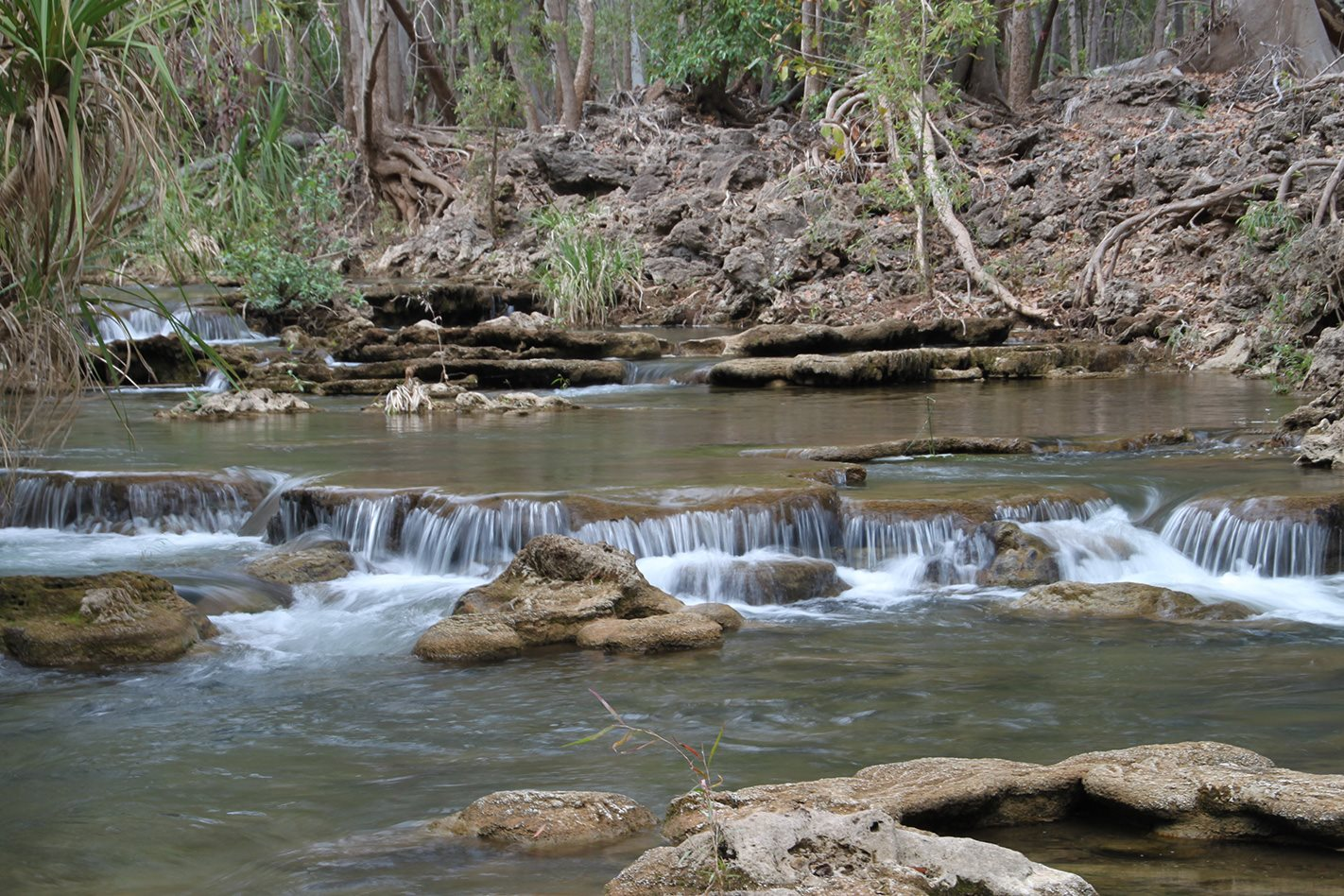 Waterhole in Boojamulla Lawn Hill National Park QLD