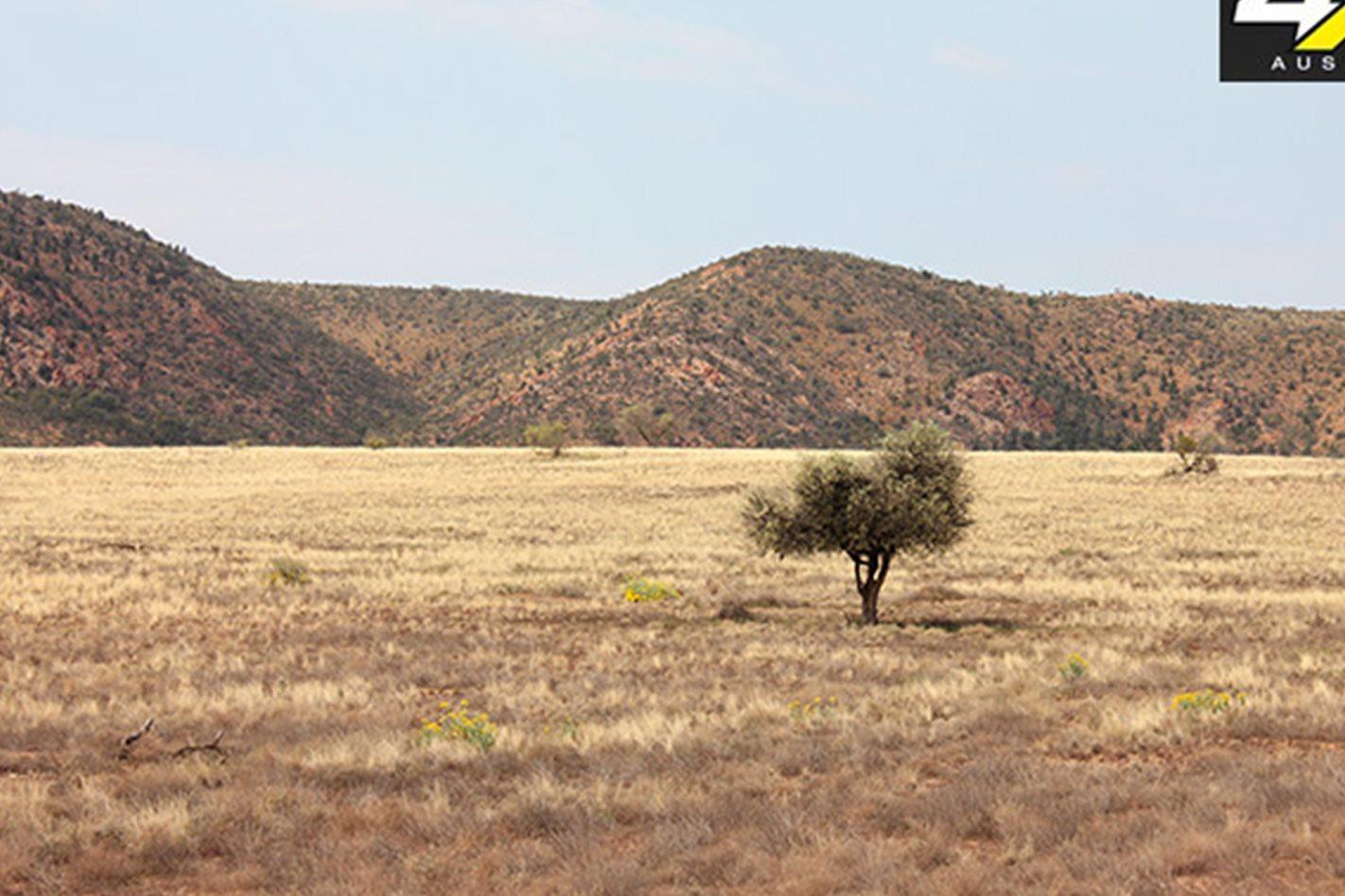 Flinders-Range.jpg