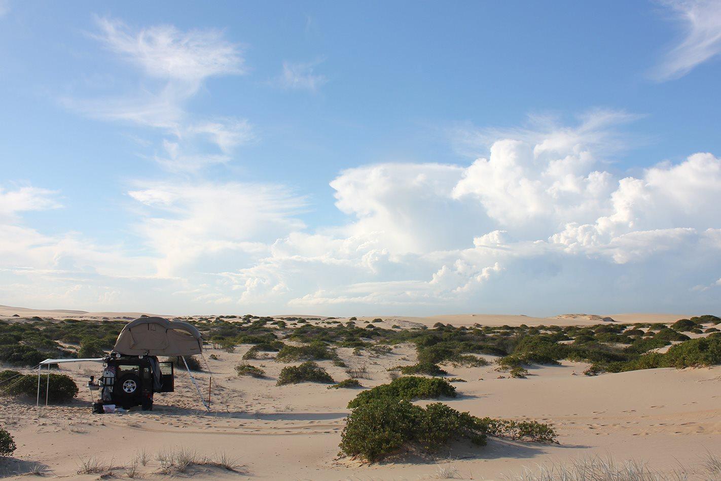 Sand dunes on Stockton beach