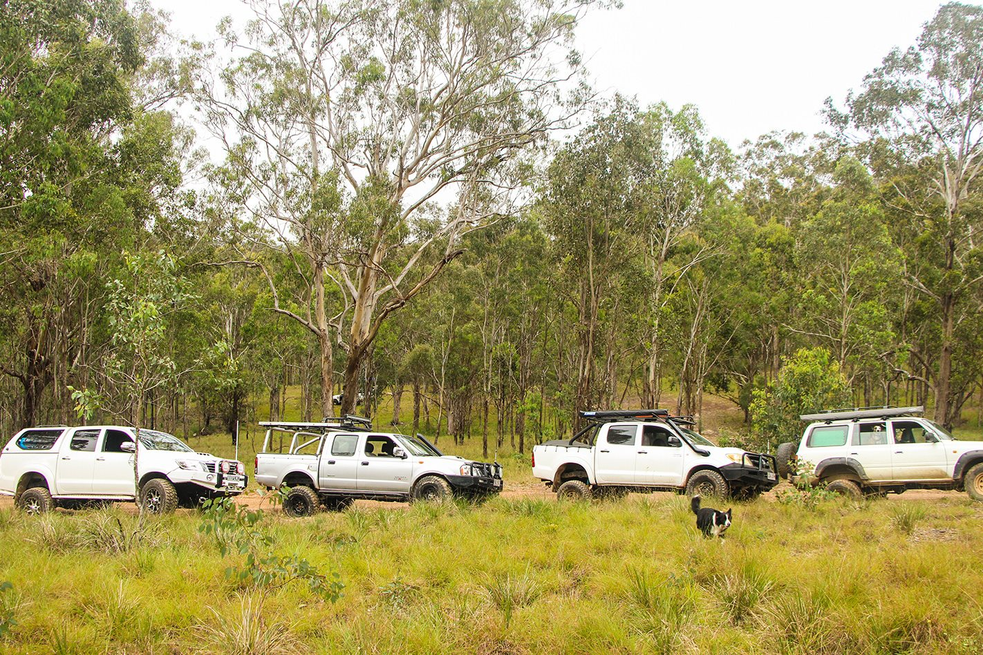 Rover Park convoy