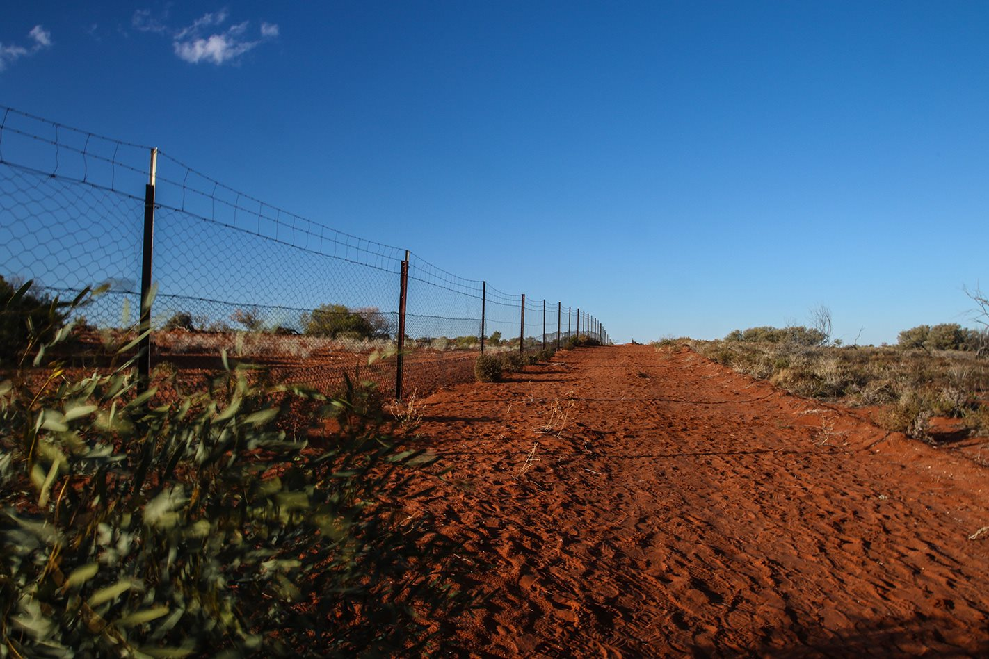 Silver City Highway, NT