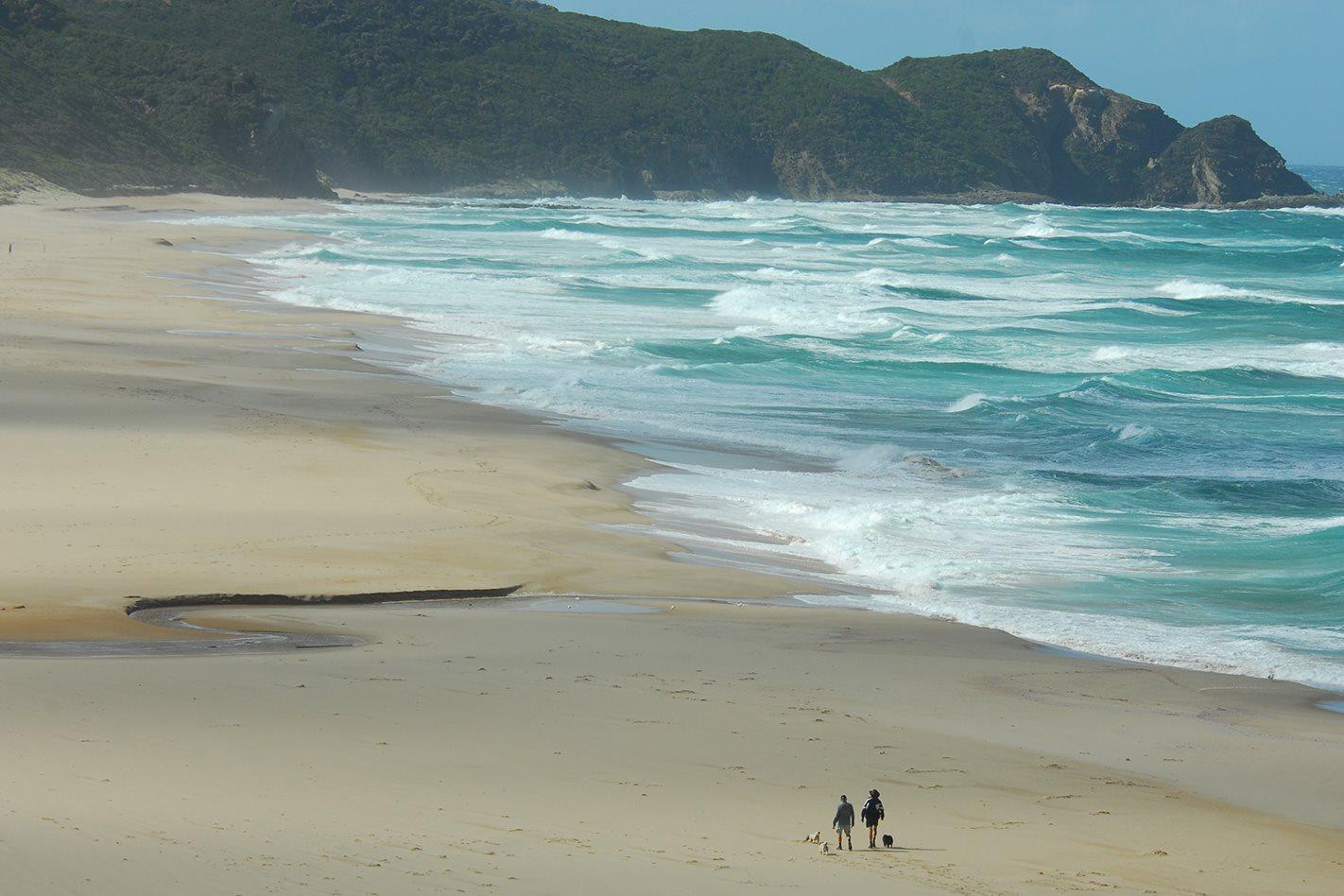 Johanna Beach Cape Otway, VIC
