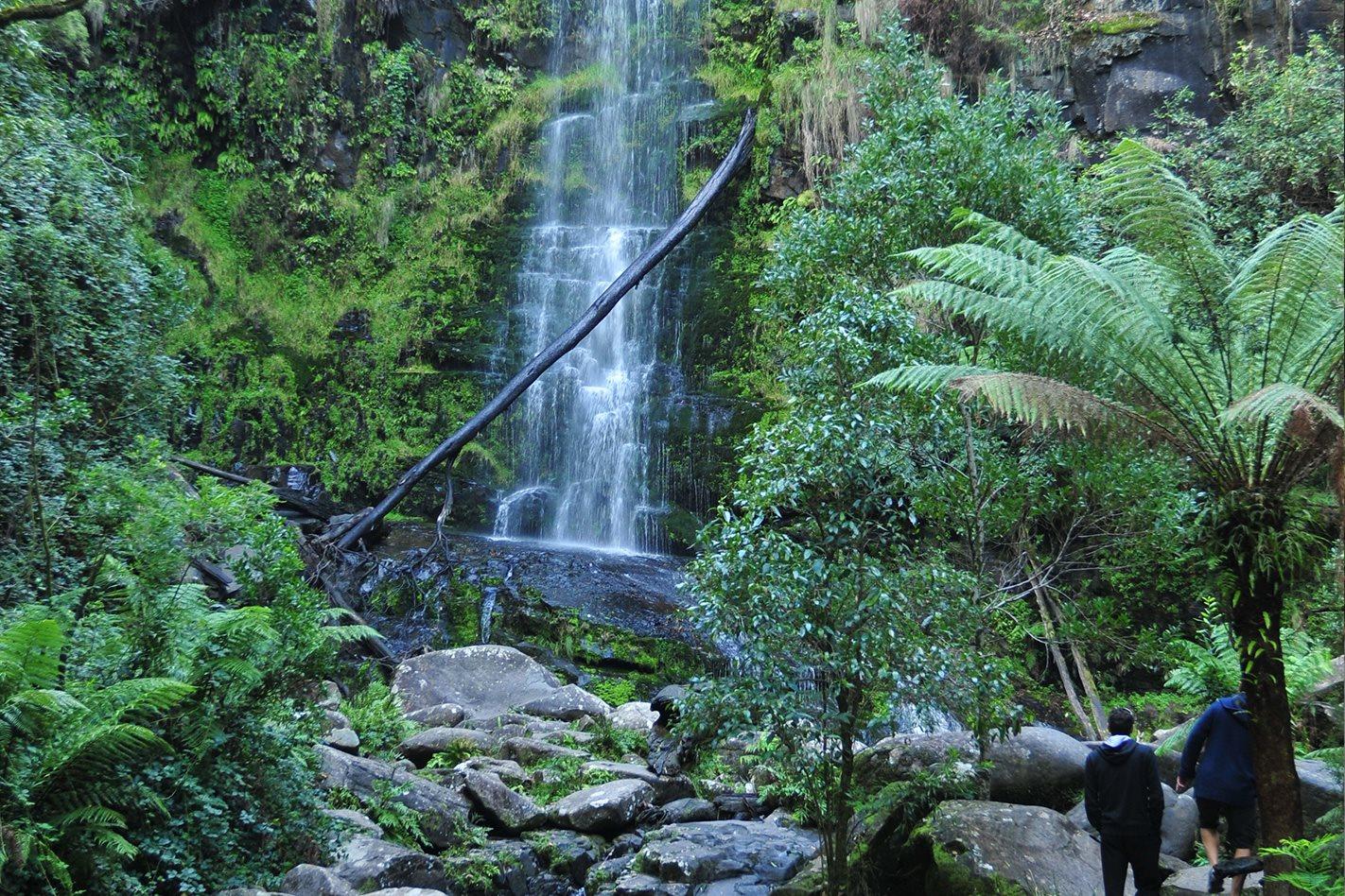Eskine-Falls-Cape-Otway,-VIC.jpg