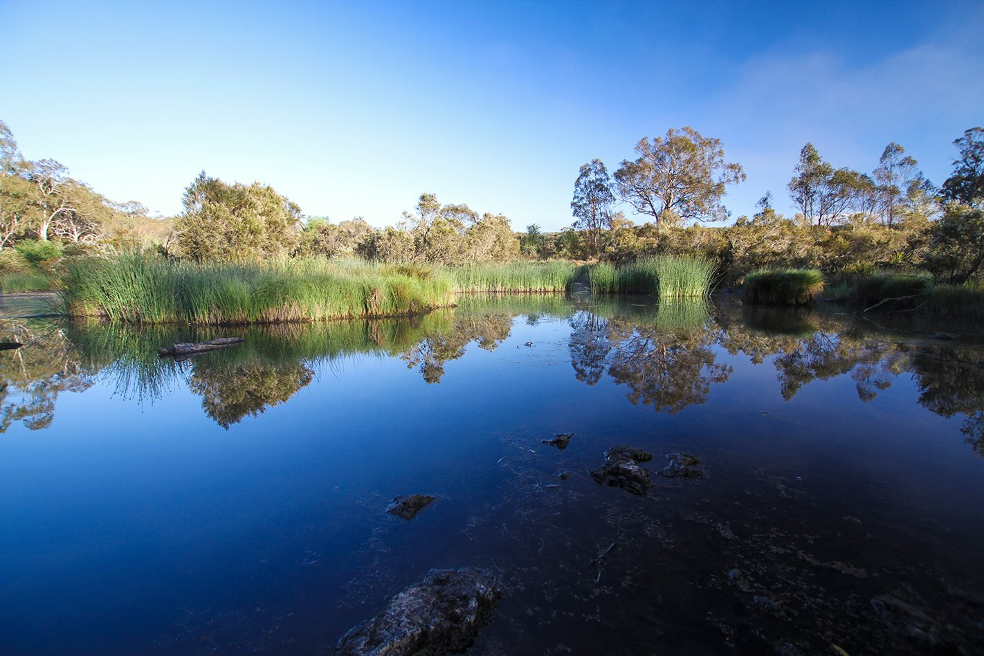 Oxley Wild Rivers National Park NSW lake.jpg