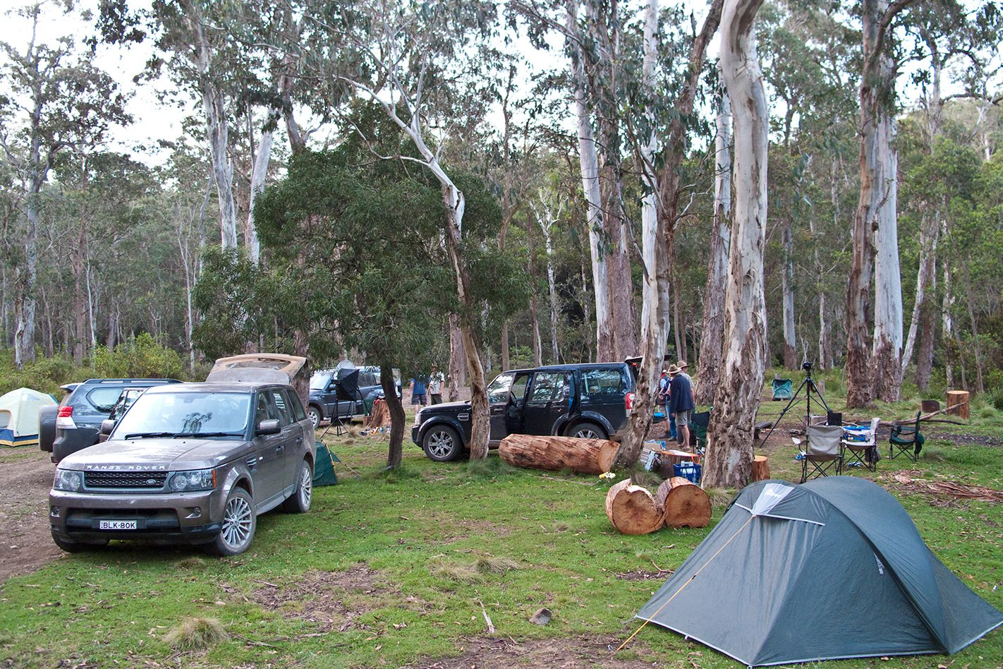 Barrington Tops National Park Nsw Capital City Escapes