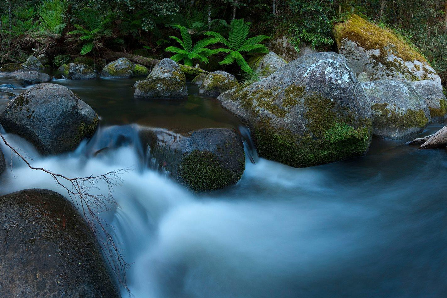 Barrington-Tops-National-Park-creek.jpg