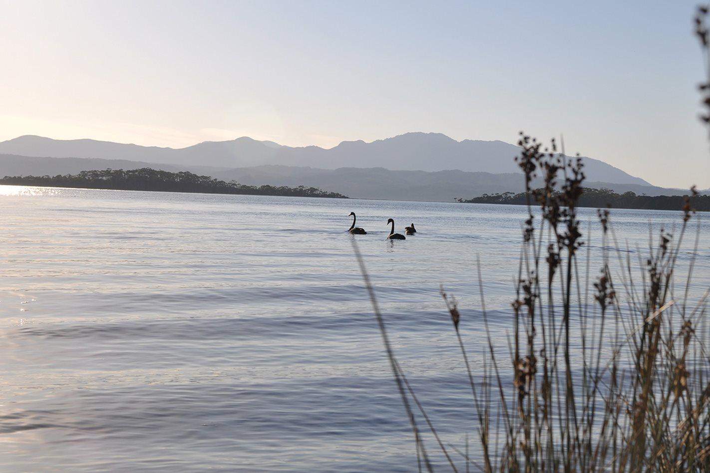 View-of-Cradle-Mountain-Tasmania.jpg
