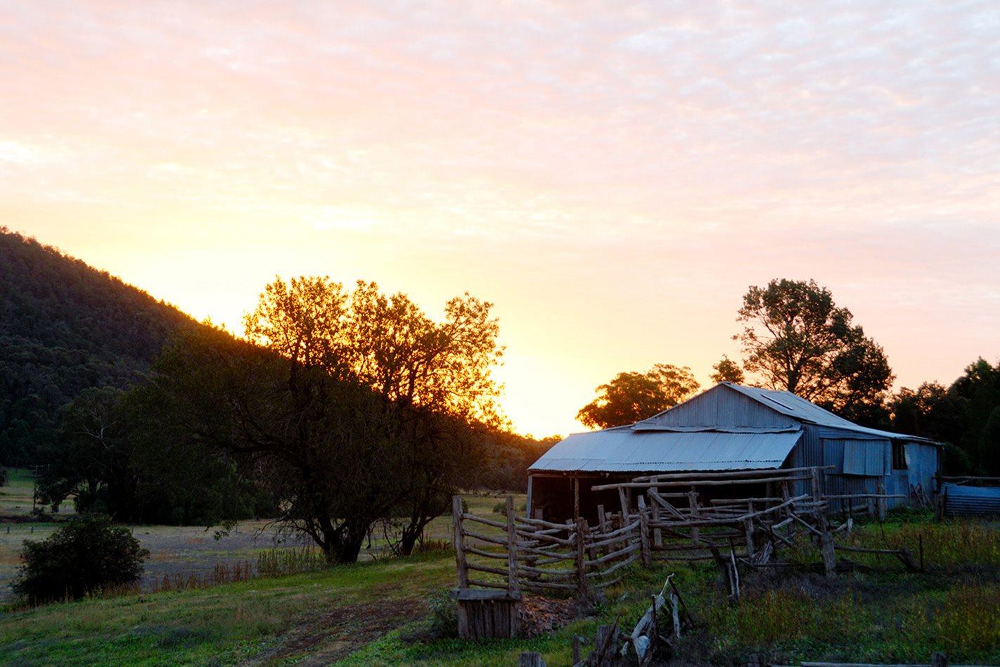 Old-cattleyard-Nangar-National-Park,-NSW.jpg