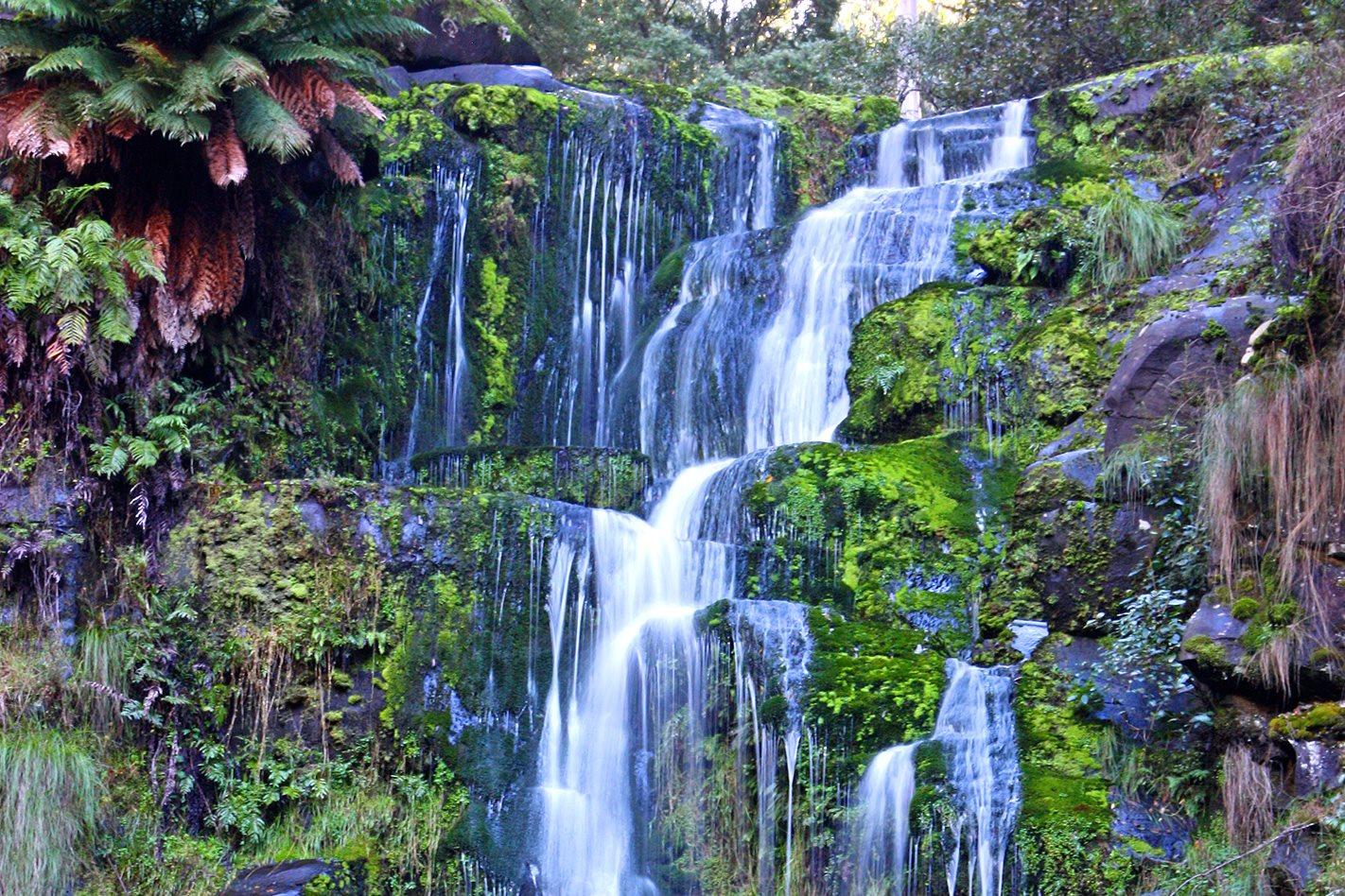 Otways waterfall