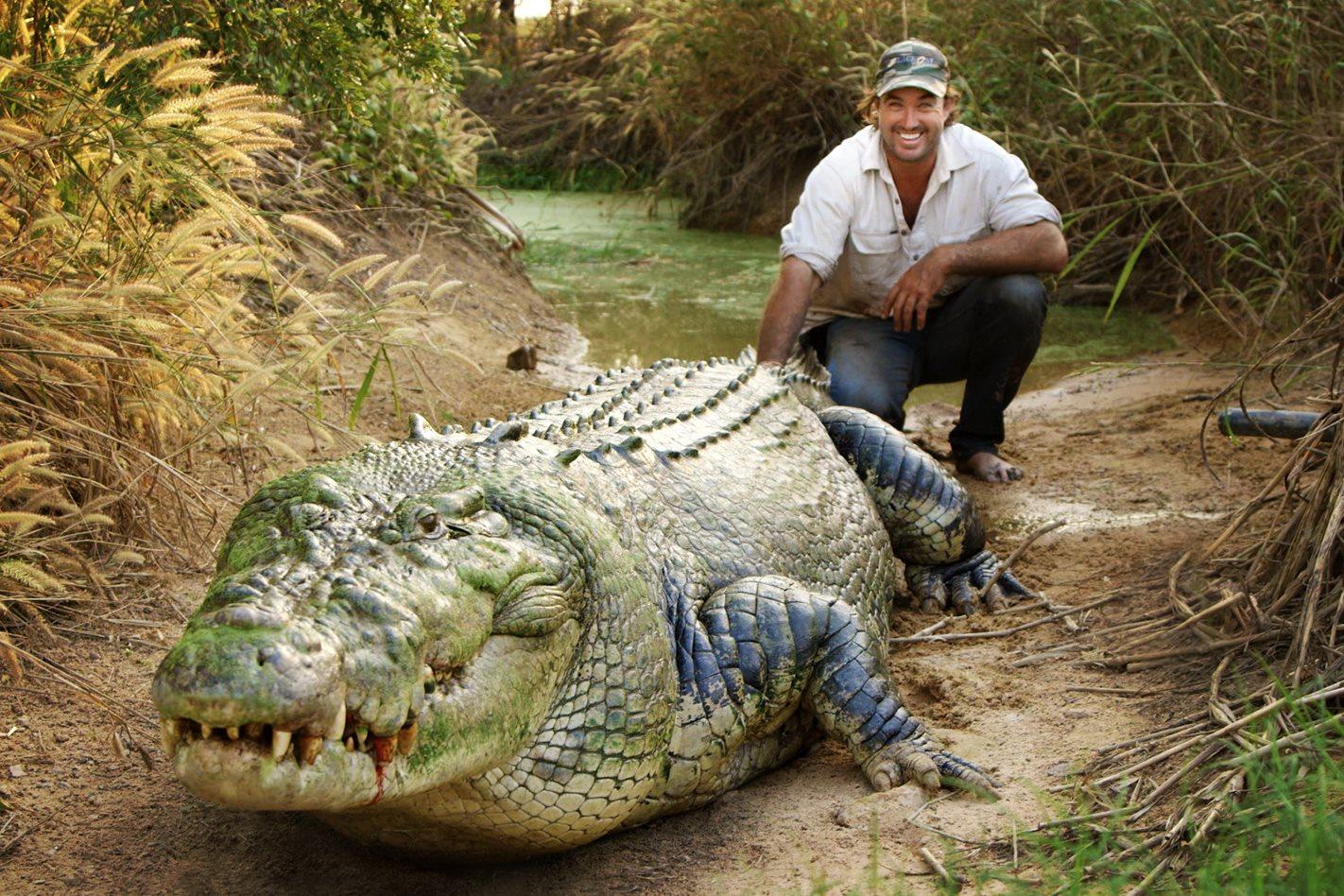 Matt wright pet crocodile