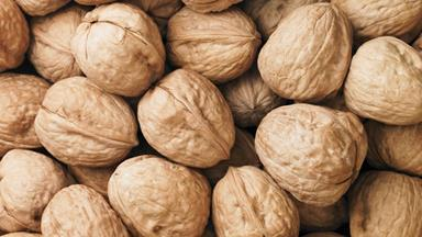 Nuts every day keeps heart disease at bay!