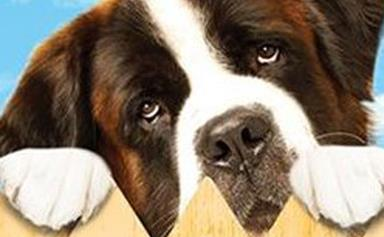 Famous animals from film and television