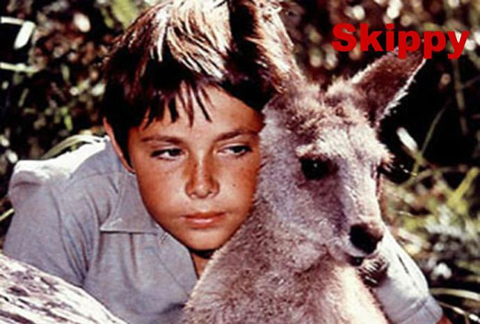 The famous Skippy.