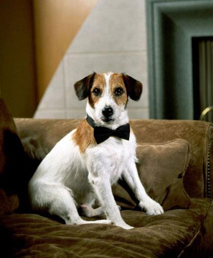 Eddie from TV show *Frasier*.