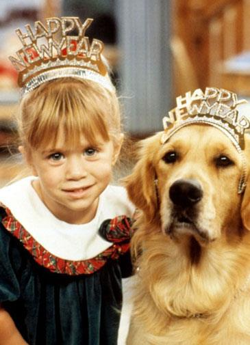 Comet from *Full House*.