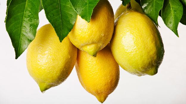 The secret to growing perfect lemons