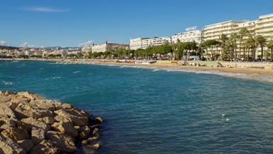 The secret life of the Cannes Film Festival