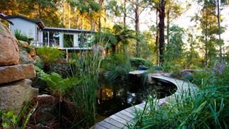 Phillip Johnson's Dandenon Ranges house and garden. Photography: Claire Tackas.